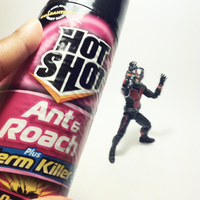 Antman defeated by Dollwoman