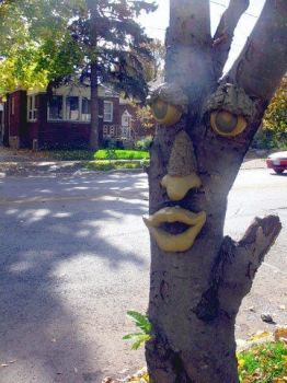 Face on a tree. by Vulgarx