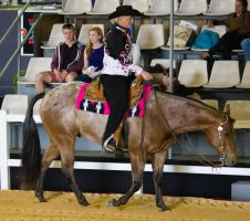 STOCK - 2014 Total Equine Expo-41 by fillyrox