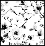 6 ps floral brushes by creativesplash