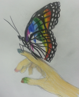 Every Color on a Butterfly's Wings by ElhiniPrime