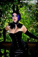 Maleficent Tribute 3 by rozfriday