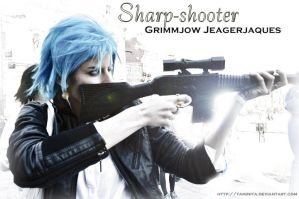 Sharp-shooter - Grimmjow by yaminita