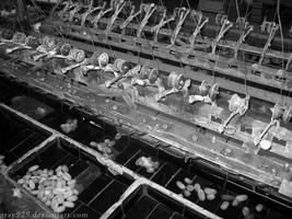 Chinese Silk Factory by gray929