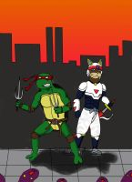 TMNT and SPC by Redcavalier