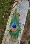 Peacock Leather Feather by windfalcon
