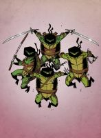 TMNT - 01 by darrenrawlings