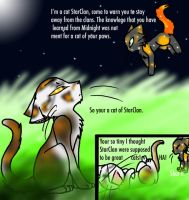 Sol Meets StarClan by FieryTiger
