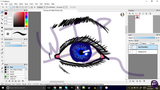Drawing Practice with Tablet. by LinkFan239