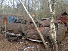 1954 Chevy and 1949 Ford by ChewyTheWolf