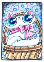 Funny cat is not having fun ACEO by KingZoidLord