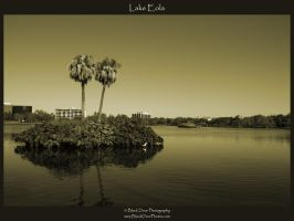 Lake Eola by blackdoorphotos