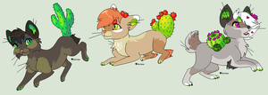 Cacti Kitties -Auction//OPEN by Kainaa