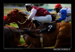 Racing Horses II by stonemx