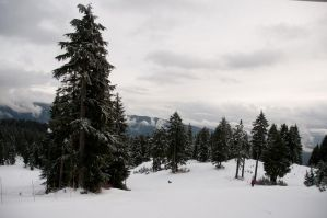 Mt Seymour by xDNarnian