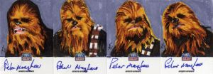 Star Wars Galaxy 7 Sketchagraph Card: Peter Mayhew by AllisonSohn