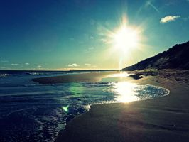 Montrose Beach by Danny7293