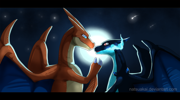X and Y by Natsuakai