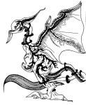 Dragon - black and white by Slance