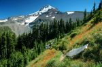 Mount Hood from 99 Ridge by greglief