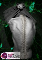 Stem Cell Research Support by Michelle-JP