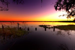 Florida Sunset by JFroi