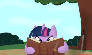Twilight's Sword Training - Mock War Day 2 by MikorutheHedgehog