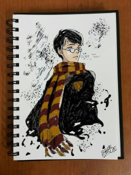 Harry by SuperG0blin