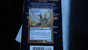Wingsteed Rider MTG Card Alter by somechick73