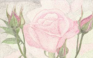 pointilism rose by slight-of-hand