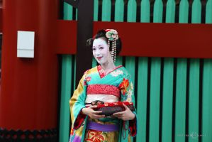 A Geisha by WhiteBook