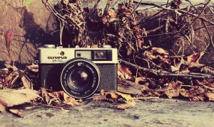Olympus Wasteland (Old Camera) by ZahrahLeona