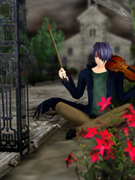 Violin Series 2 by RealistJuliet