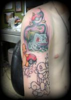 Pokemon sleeve by MercuryDemosthenes