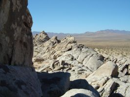 South In The High Desert by TRANS4MATICA