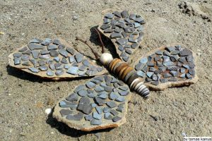 Stone butterflies variations in hungary by kanya by tom-tom1969