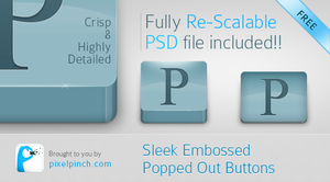 Sleek Large Embossed Popped Out Buttons - PSD File by abhashthapa