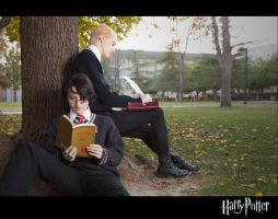 Harry Draco cosplay by TheSinisterLove
