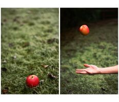 Une Pomme by xessencex