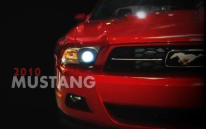 2010 Mustang by Snohawk
