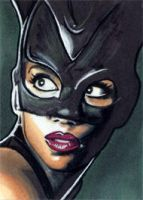 Catwoman - Halle Berry by veripwolf