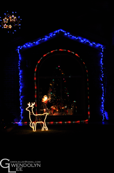 Christmas Lights 29 by GwendolynLee