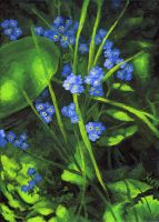 Acrylic forget-me-not by Seyreene