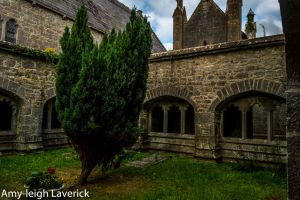 Adare priory cloister2 by Amy-the-Faerie