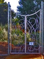 Fiddlehead Fern Gate by ou8nrtist2