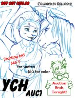 YCH Auction Ends Tonight! Starting bid is $45.00 by lady-cybercat