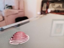 Sea Shell by Wolfchick36
