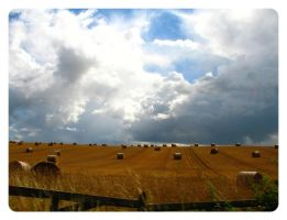 The Colours of August by Baby-Shambles