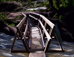 Rickety bridge by Nothofagus-obliqua