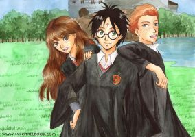 Harry, Ron and Hermione by Alkanet